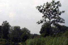 kanal_elblaski_20100623_1672481935